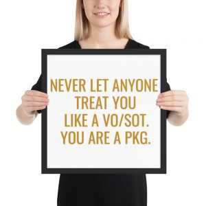 Never Let Anyone Treat You Like A VO/SOT. You Are A PKG Framed Poster Gold
