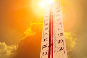 Survive The Summer Heat With These Refreshing Hacks